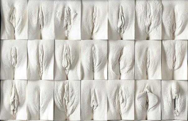 vaginas2-tt-width-604-height-388