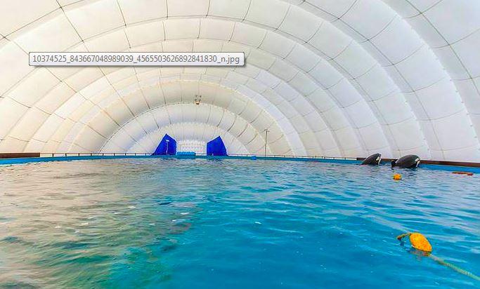 piscine orc